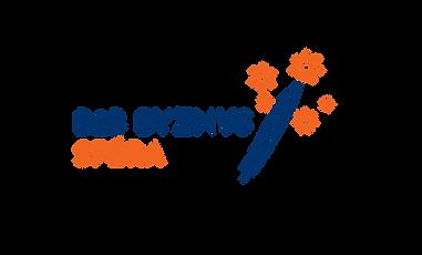 B2B_byznys_Sfera-01.png