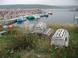 New England Clam.JPG