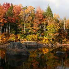 Moose River Reflections 6x6.jpg
