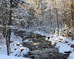 Cascade Creek in the Winter.jpg