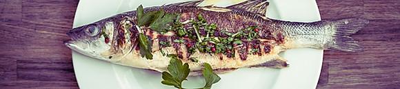 Fisch mit Reis