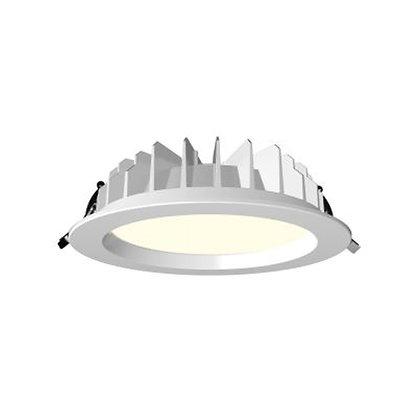 Stryker LED Downlight