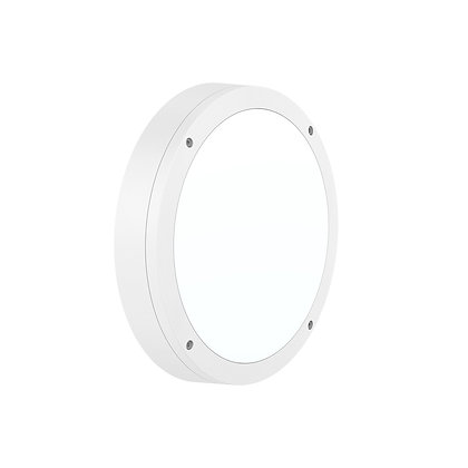 Luna Ceiling Light