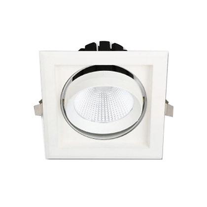 Trad LED Downlight