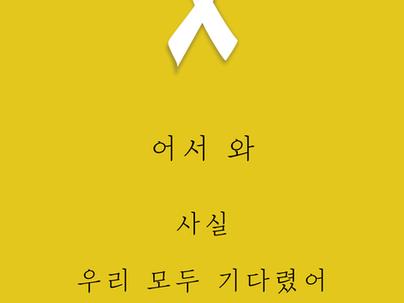 드디어 세월호 아이들 인양