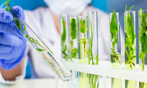 FROM PLANT-BASED TO CELL-BASED