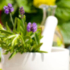 lavender with mortar and pestle.jpg