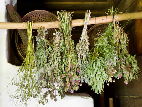 NATURES OWN MEDICINE - HERBS FOR HORSES