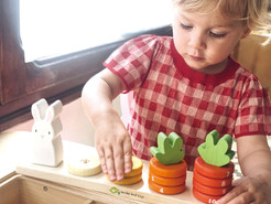 Counting Carrots Tender Leaf Toys 4.jpg