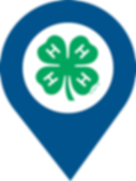 4-H Clover Map pin