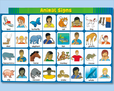 picture relating to Asl Animal Signs Printable called Pets
