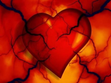 Byliny na krevní tlak umí snížit, zvýšit, vyrovnat, harmonizovat