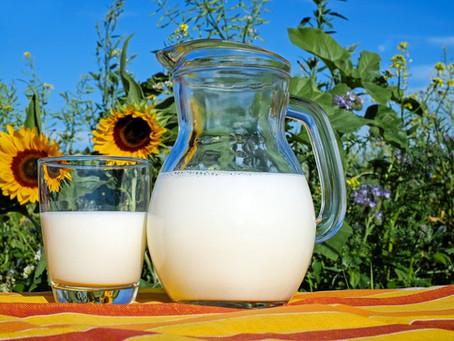 Jak mléko pomáhá a jak škodí dle tradiční dietetiky
