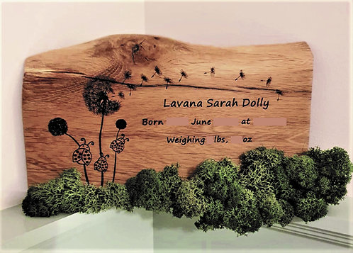 Personalised New Baby Engraved Oak Picture with Reindeer Moss