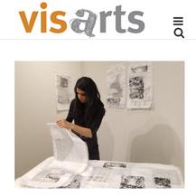 VisArts Artist Spotlight