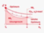 DE_Methoden_optimiert_nichtlineare_progr