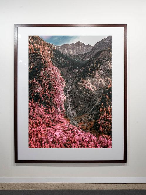 Pink Uri