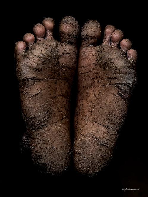 Feet stories (Melius)