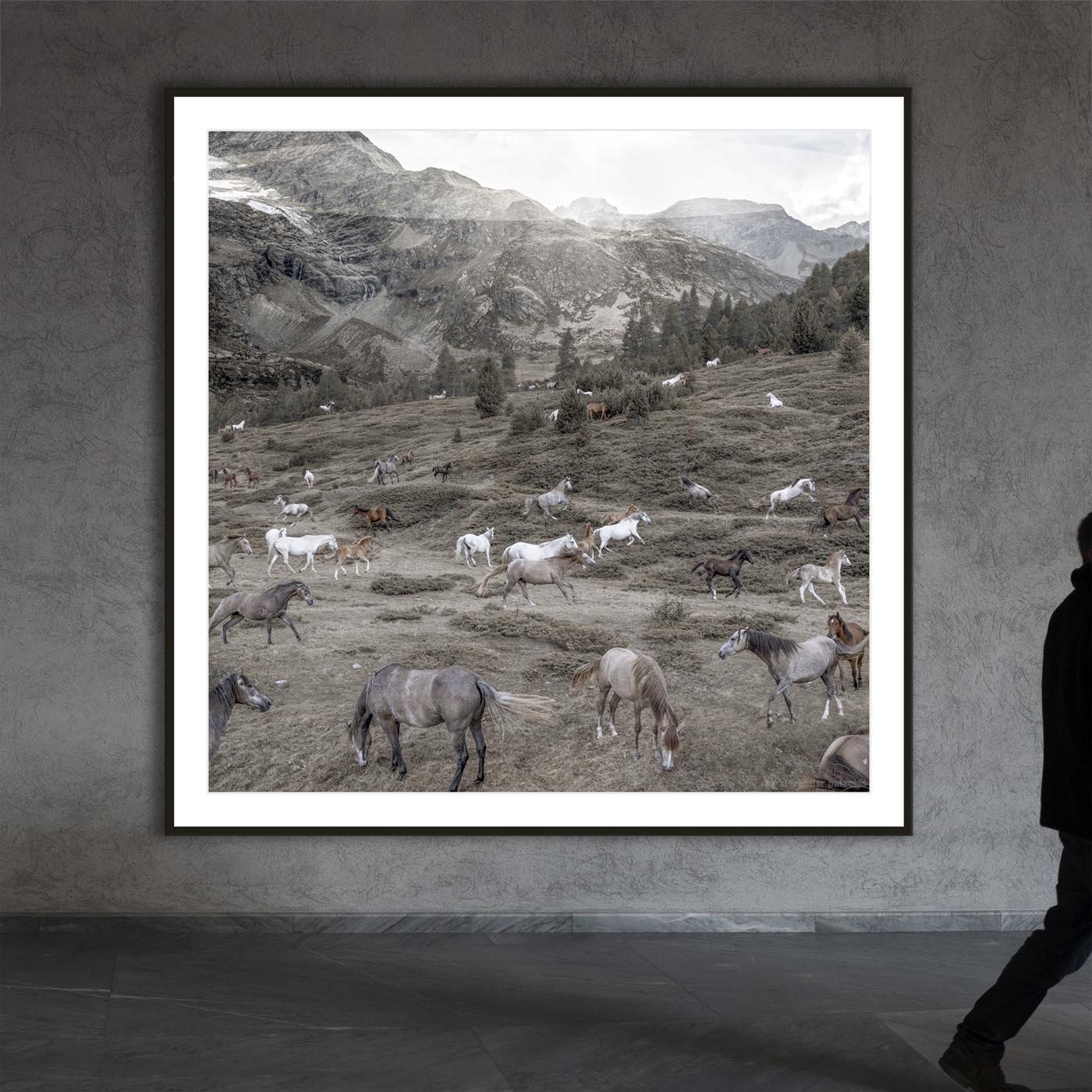 Die Wilden aus Graubünden