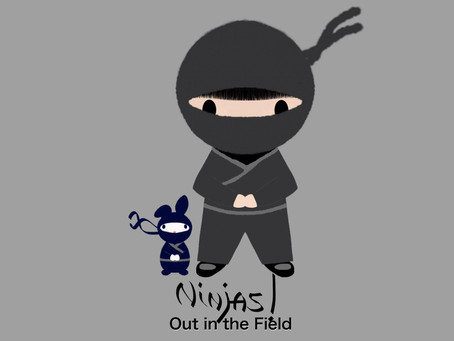 NINJAS! (Out in the Field)