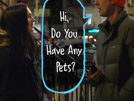 Hi, Do You Have Any Pets?
