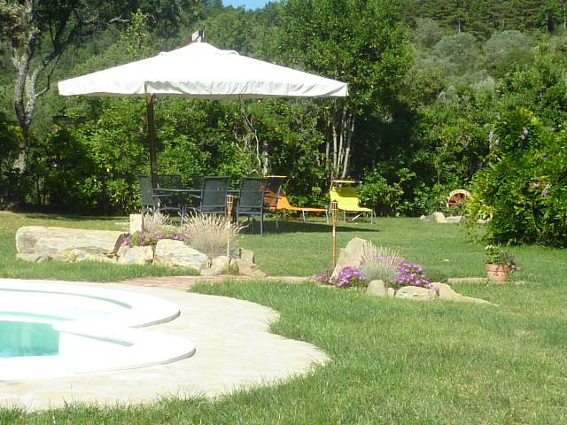 Pool + umbrella.JPG
