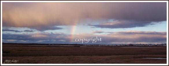 rainbow-585x228.jpeg