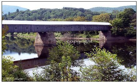 bridge-442x267.jpeg