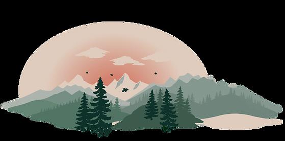 Yook steht für richtig guten Klimaschutz für Onlineshops