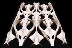 Osteonic Structures 001 website image