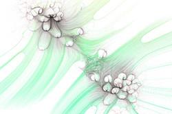 Fluid Point Processing 006 Website