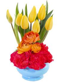 tulip-sunrise-floral-design-AO09219.365.