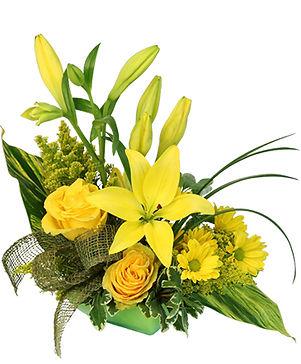 playful-yellow-flower-arrangement-AO0433