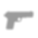 PCSO_Weapon Icon.png