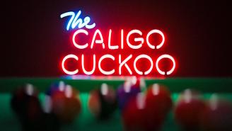 The Caligo Cuckoo