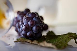 Trauben, grapes