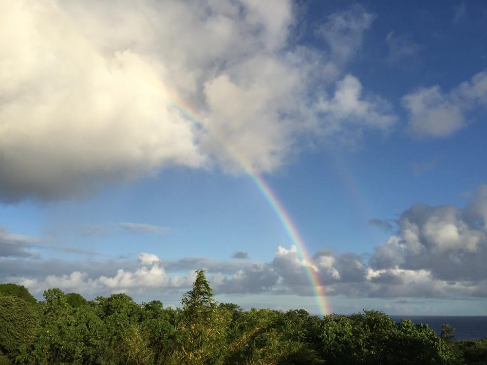 rainbow-1024x768.jpg