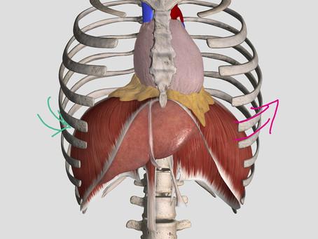 呼吸と螺旋