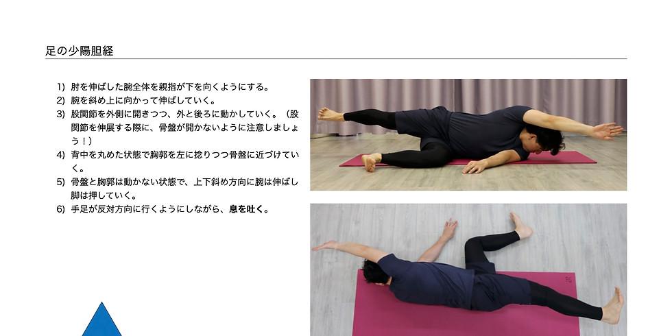 Meridian Movement Method