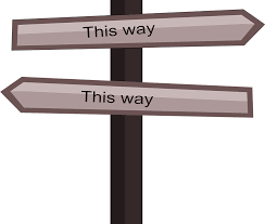 confusing-career-path