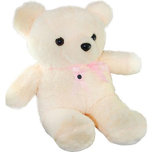 Teddybeer - camera
