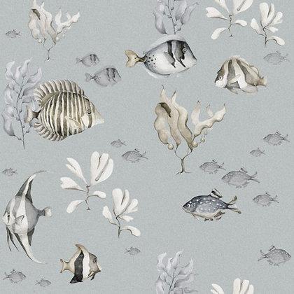 Colourful Fish Wallpaper