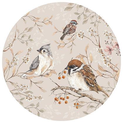 Birds In A Circle