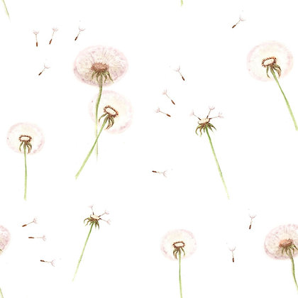 Dandelions Wallpaper