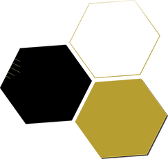 TheHiveHoneyComb.png
