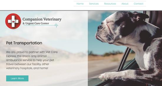 Website Design & Rebranding
