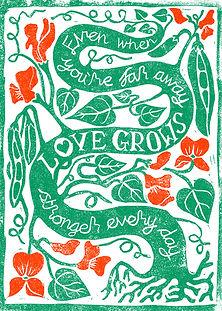 seeds of hope card Ellen competition ent