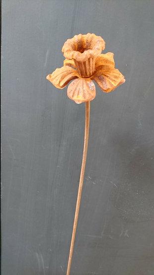 Daffodil Raw Black Steel Garden Ornament - Hayley Ilett