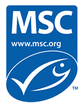 msc_logo_0.png
