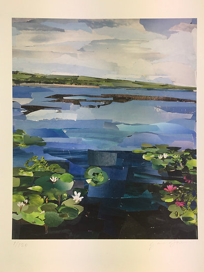 'Water lilies' by Janey Jones